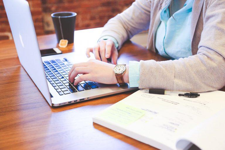 Basic + Advance WordPress Training